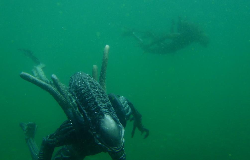 Aliens Underwater