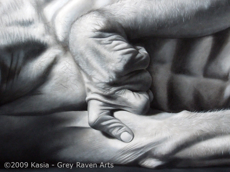 Kevin Detail - Kasia Grey Raven Arts