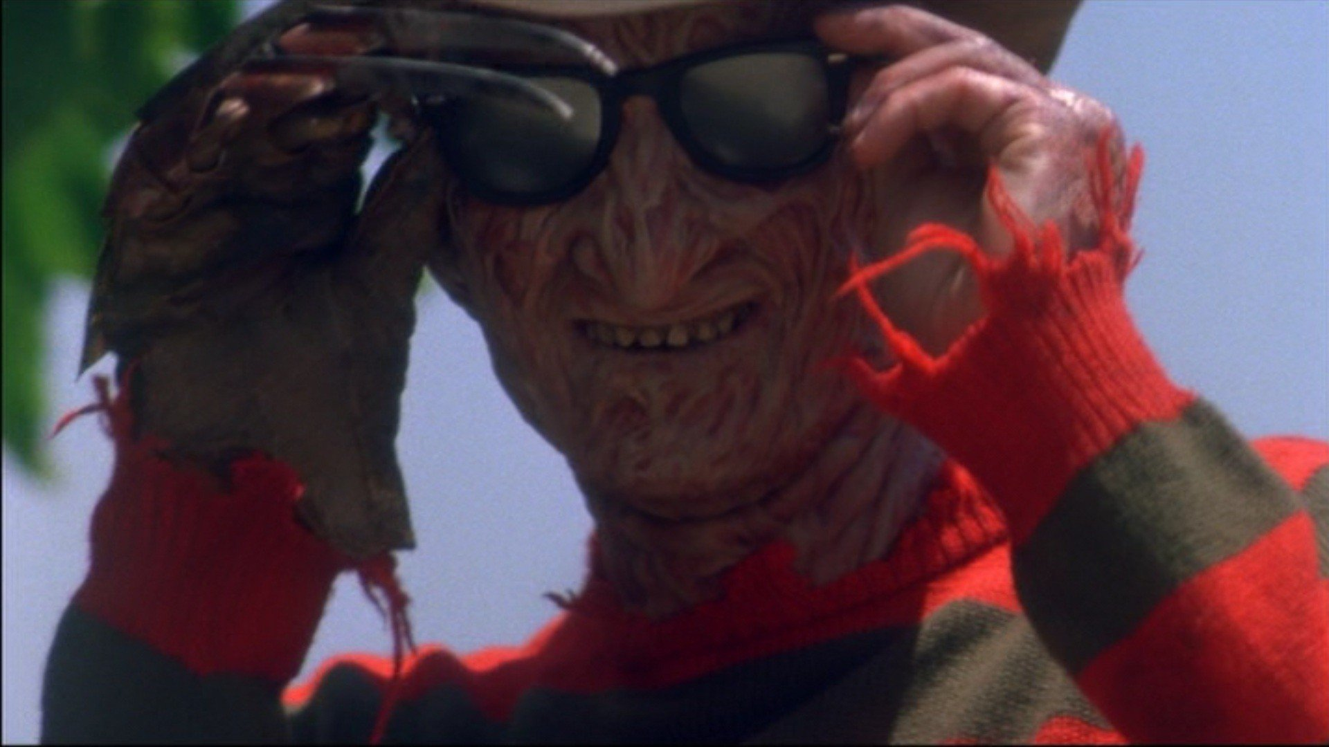 Freddy in Shades