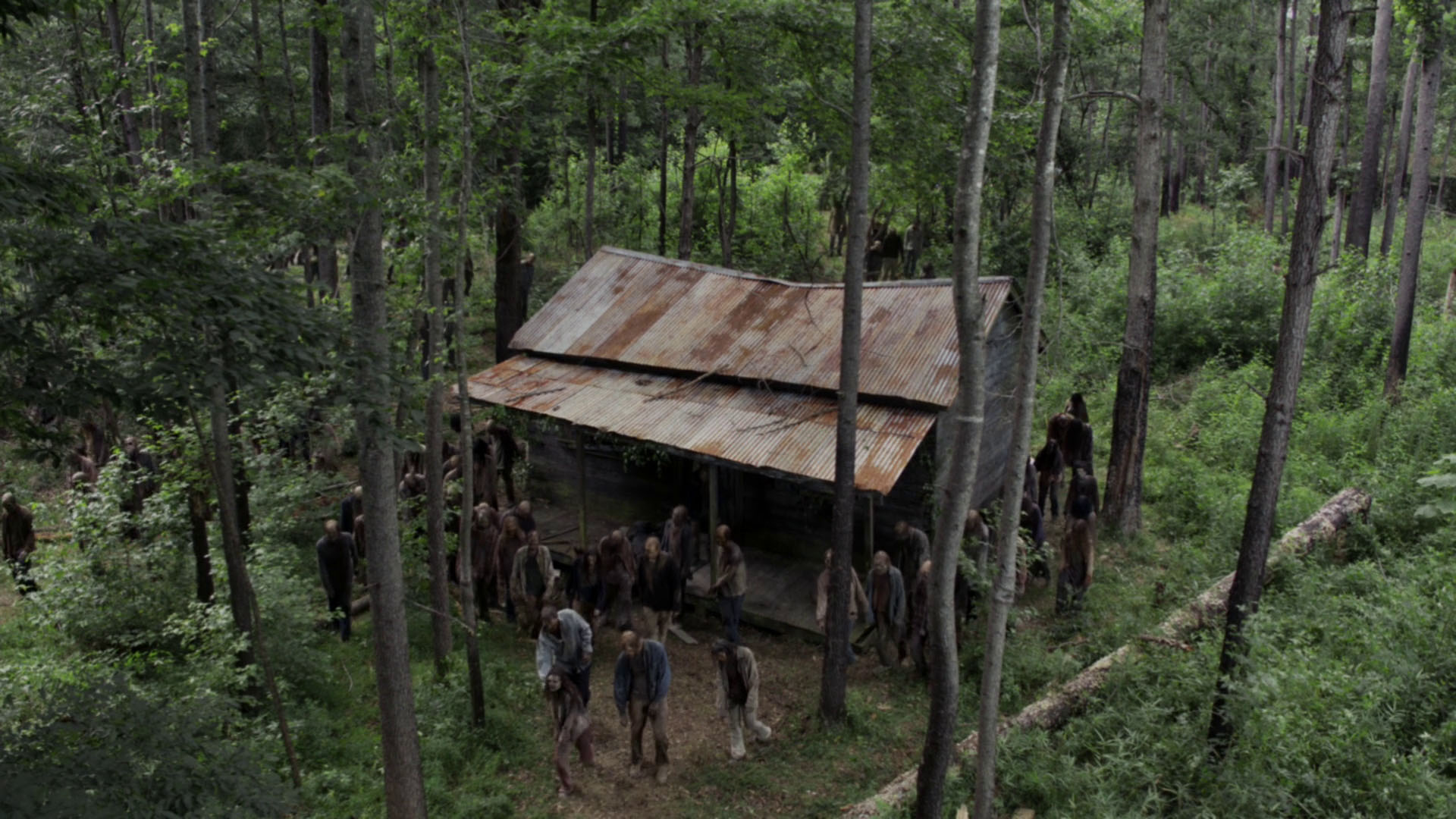 The Walking Dead — The Evil Dead